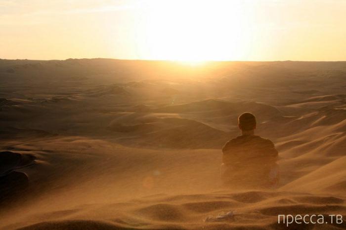 Уакачина: Перуанский Оазис в пустыне (13 фото)