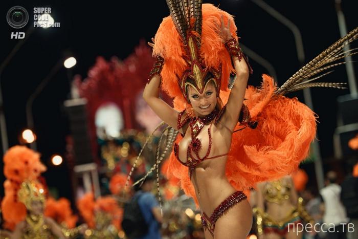 Карнавал в Гуалегуайчу, Аргентина (10 фото)