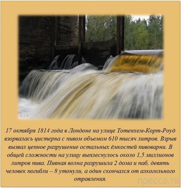Интересные факты обо всем на свете, часть 11 (20 фото)