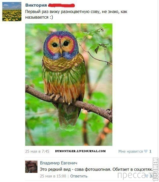 Прикольные комментарии из социальных сетей, часть 59 (29 фото)