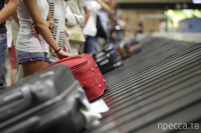 Вещи, которые нельзя провозить через таможню в разных странах мира (6 фото)