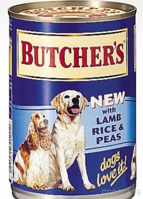 Корма для животных убивают собак (4 фото)