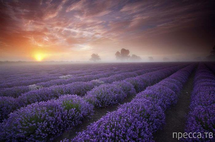 Красивые фотографии разных уголков нашей планеты (22 фото)