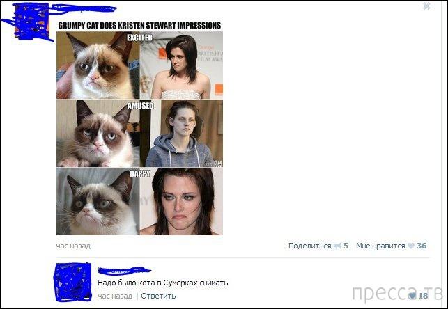 Прикольные комментарии из социальных сетей, часть 61 (17 фото)