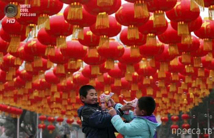 Китайский Новый Год (17 фото)