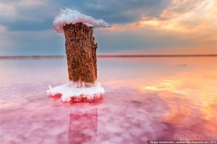 Соляные озера в Крыму (18 фото)
