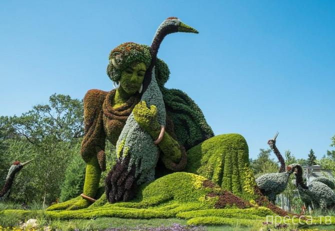 Mosaïcultures Internationales de Montréal – международная выставка садово-паркового искусства в Канаде (25 фото)