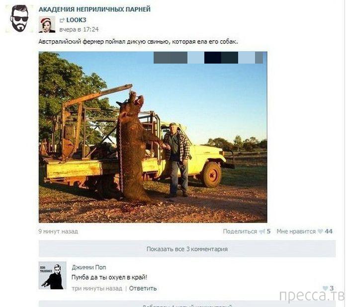Прикольные комментарии из социальных сетей, часть 65 (35 фото)
