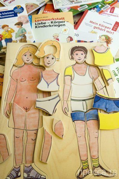 Плюшевые гениталии для швейцарских школьников (7 фото)
