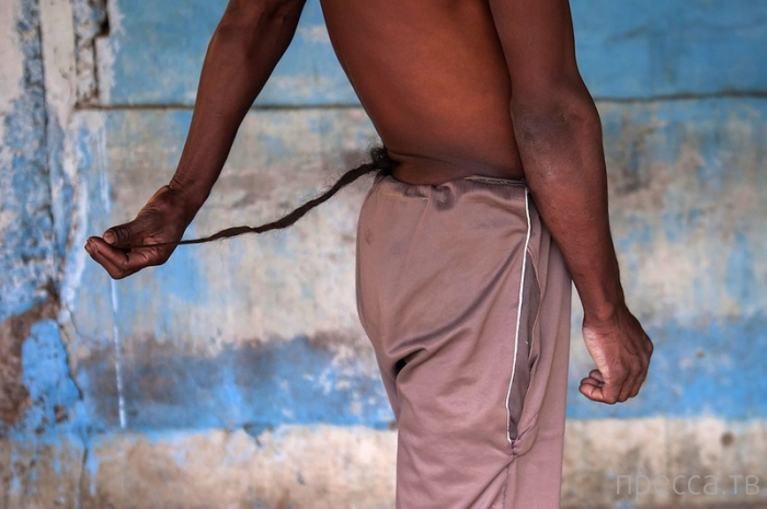 Индийца с хвостом все считают богом (6 фото)