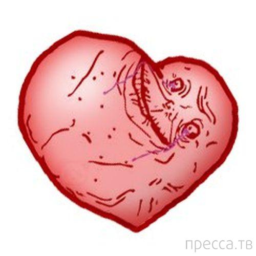 Подборка приколов на 14 февраля - День всех влюбленных (28 фото)