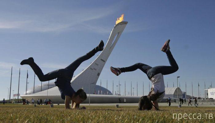 Жара на Олимпиаде в Сочи 2014 (24 фото)