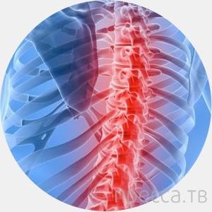 Топ 10: Основные проблемы тела человека, приобретенные с эволюцией (11 фото)