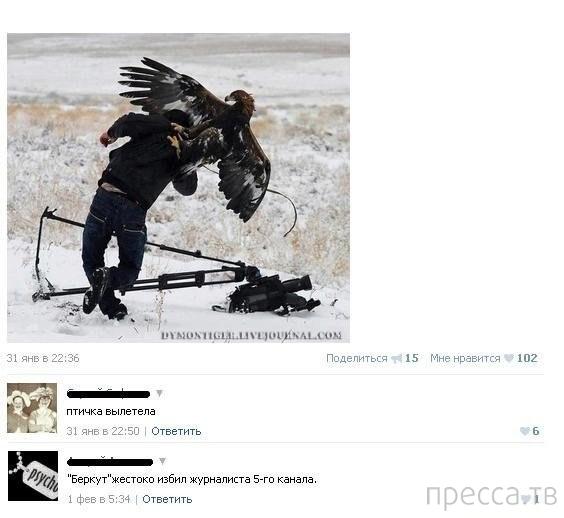 Прикольные комментарии из социальных сетей, часть 72 (32 фото)