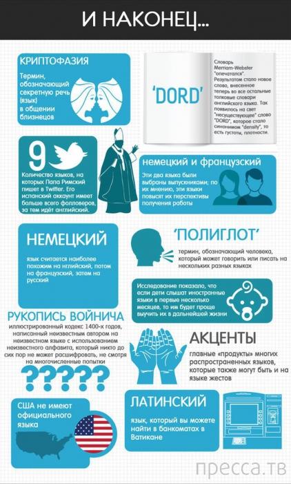 Все самое интересное о языках (8 фото)