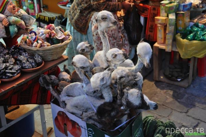 Топ 4: Главные колдовские рынки мира (29 фото)