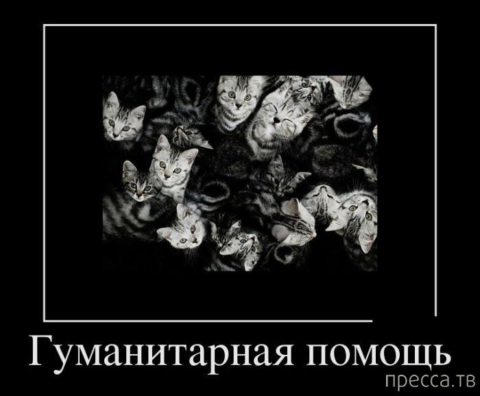Самые злобные демотиваторы, часть 122 (18 фото)