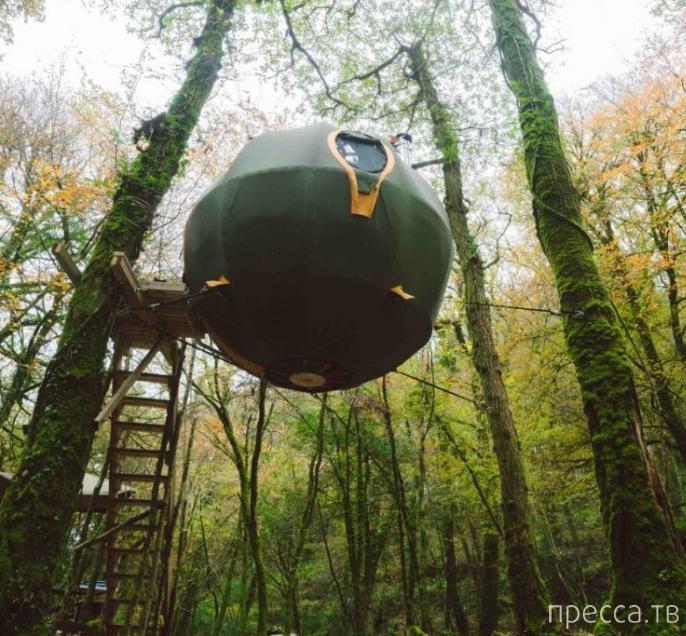 Палатка-шар для подвешивания на деревья (7 фото)