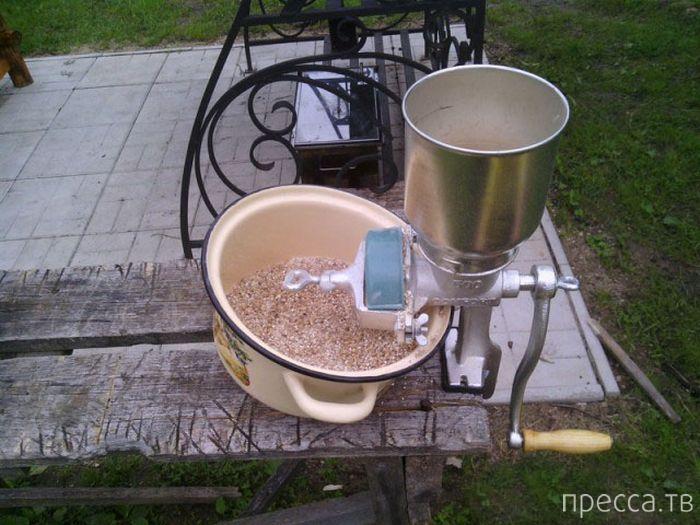 Как сварить пиво в домашних условиях (23 фото)