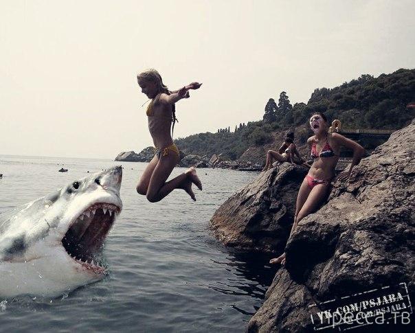 Прикольные работы мастеров фотошопа из социальных сетей (40 фото)