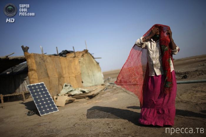 Соляные поля Индии (11 фото)