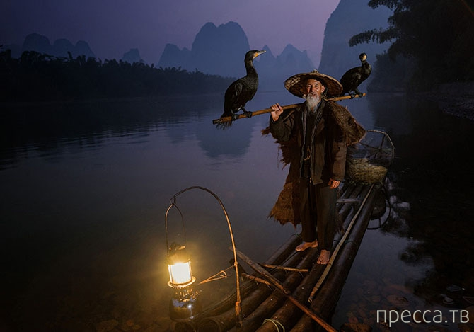 Победители Sony World Photography Awards 2014 (24 фото)