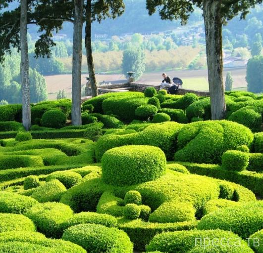 Сады Маркессака (Jardins de Marqueyssac) - необыкновенный садово-парковый комплекс во Франции (8 фото)