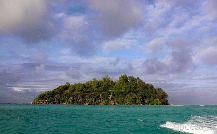 Англичанин Брендону Гримшоу (Brendon Grimshaw) купил необитаемый остров (8 фото)
