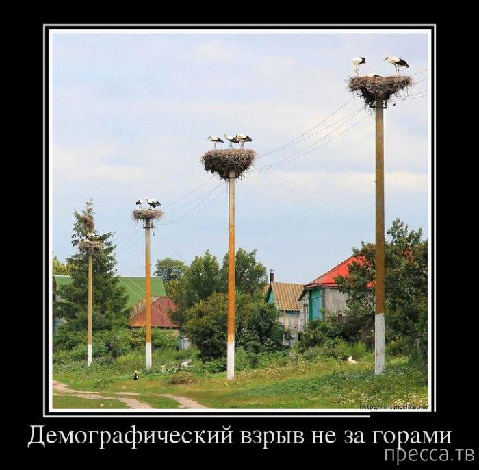 Самые злобные демотиваторы, часть 136 (29 фото)