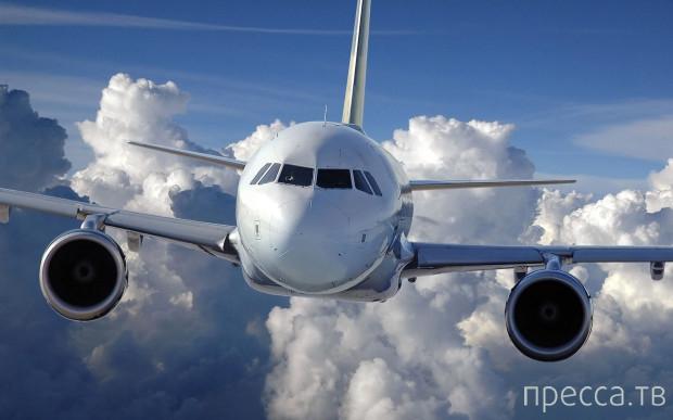 Секреты современных авиалайнеров (11 фото)