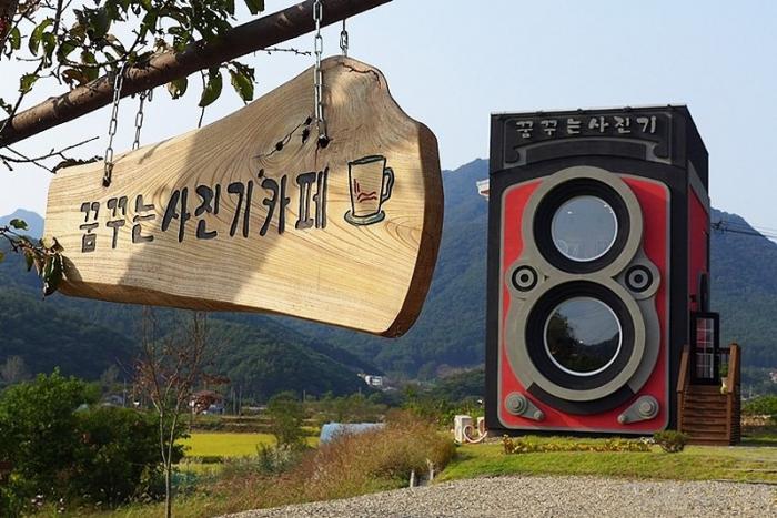 Кафе-фотокамера недалеко от Сеула, Южная Корея (13 фото)
