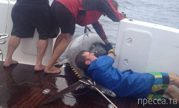 Женщина из Новой Зеландии поймала гигантского тунца (6 фото)