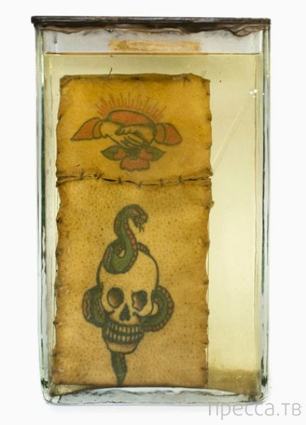 Оригинальная коллекция криминальных татуировок в Ягеллонском университете в Кракове, Польша (12 фото)