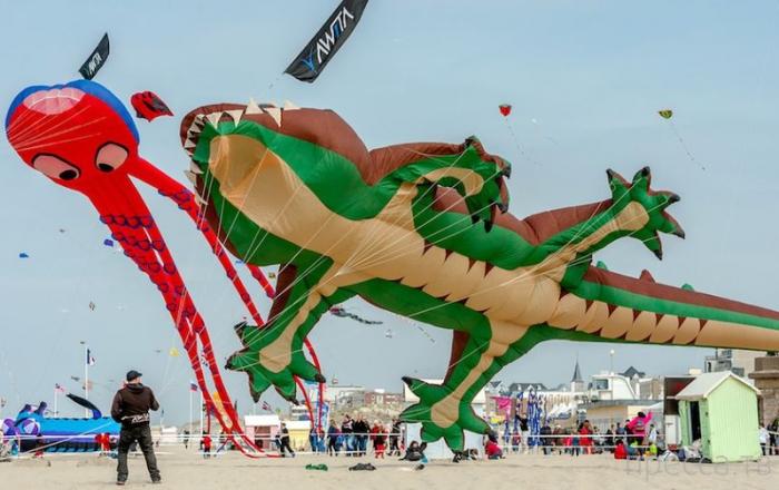 Ежегодный фестиваль воздушных змеев в Берк-сюр-мер во Франции (7 фото)