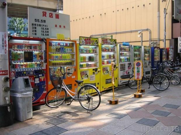Интересные и необычные факты о Японии (10 фото)
