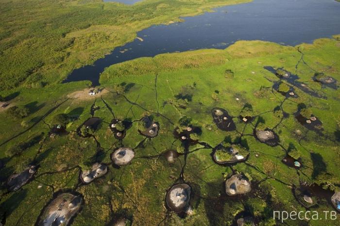 Жизнь на болоте Судд (9 фото)