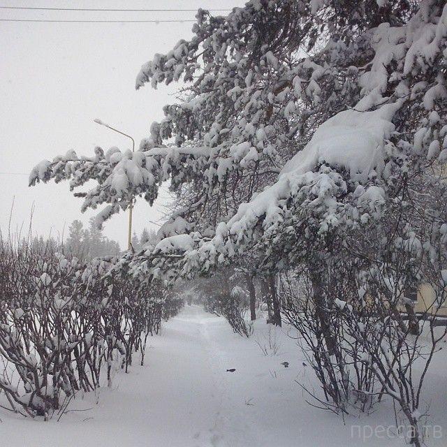 Заснеженный к 1 Мая Екатеринбург (23 фото)