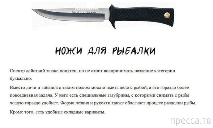 Топ 6: Основные типы ножей (11 фото)