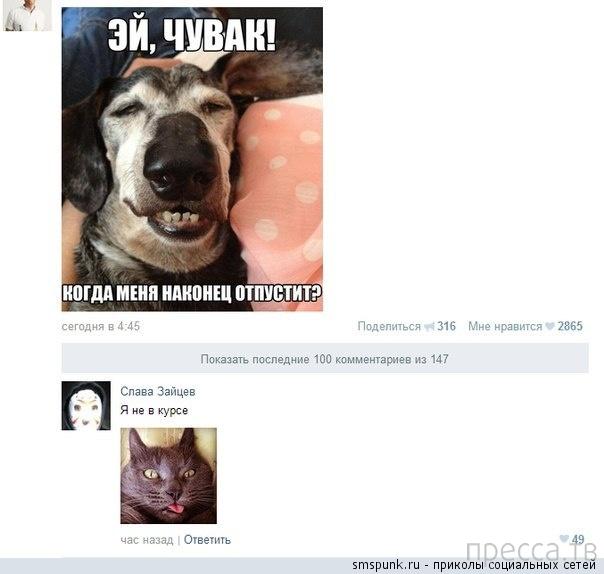Прикольные комментарии из социальных сетей, часть 166 (27 фото)
