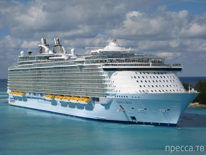 Топ 11: Самые большие в мире круизные лайнеры (11 фото)