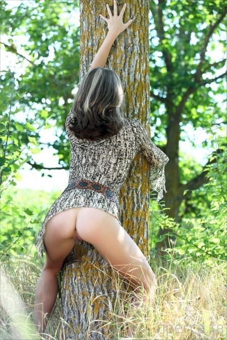 Стройная красавица в лесу  (16 фото)