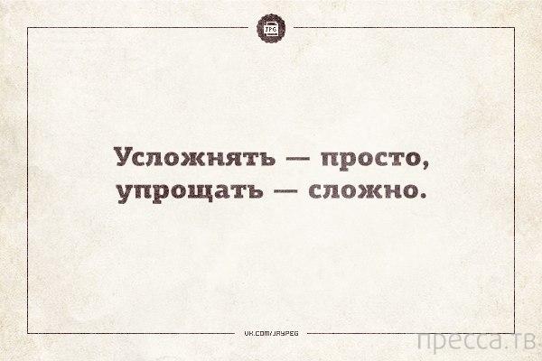 Прикольные цитаты (23 фото)