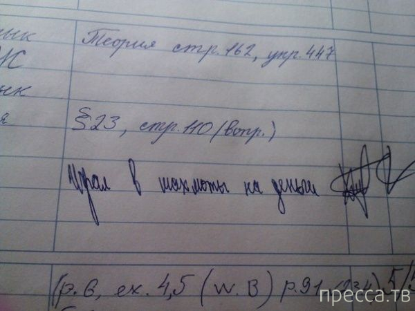 Прикольные записи из школьных дневников (12 фото)