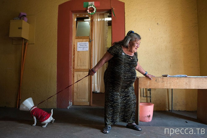 Каса Шочикецаль - дом престарелых для бывших работниц секс-индустрии  в Мехико (10 фото)