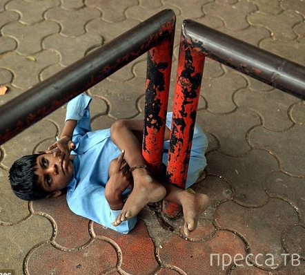 Индийская бабушка привязывает своего внука за ноги к автобусной остановке (9 фото)