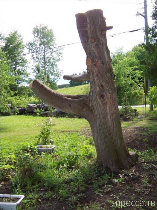 Скульптура из дерева (5 фото)