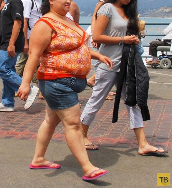 Фото толстяков в узкой одежде