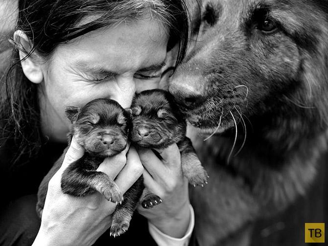 Трогательные семейные фотографии от Себастиано Лучиво (Sebastian Luczywo) (26 фото)