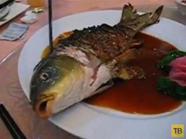 Топ 9: Самые странные блюда, которые подают в ресторанах мира (10 фото)
