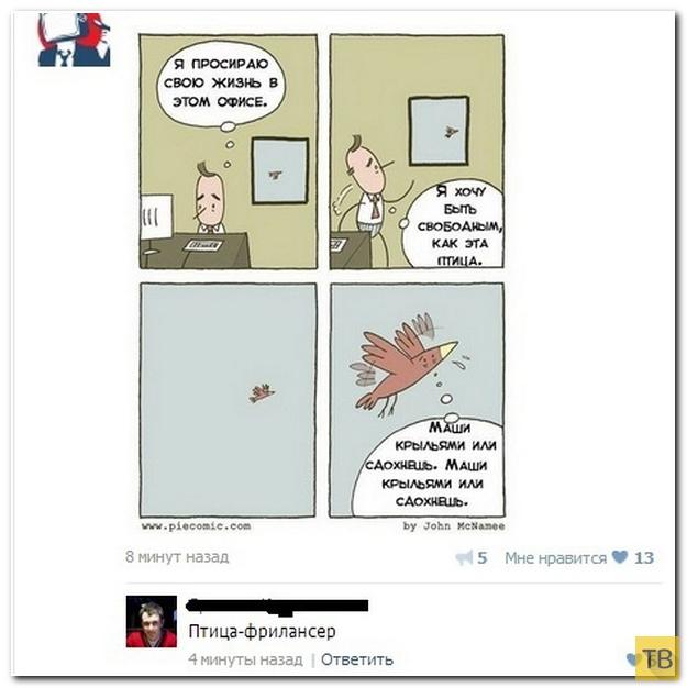 Прикольные комментарии из социальных сетей, часть 181 (30 фото)